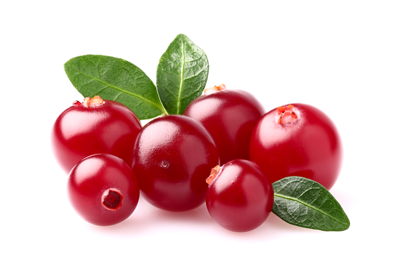 cranberry, actif naturel, L'intime